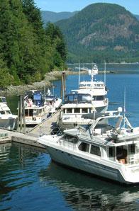 dent island marina flights northwest seaplanes